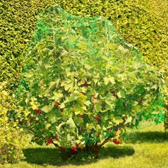 Windhager Obstbaum- und Vogelschutznetz
